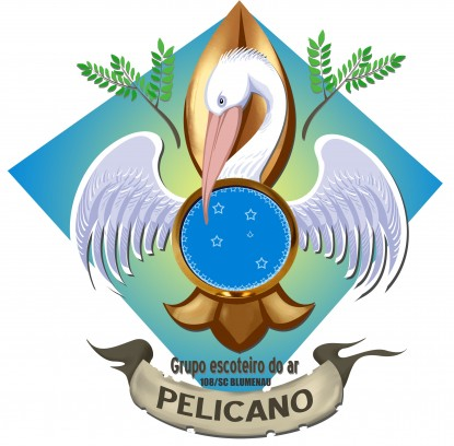 Grupo Escoteiro do Ar Pelicano 108/SC