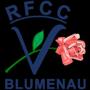 Rede Feminina de Combate ao Câncer de Blumenau